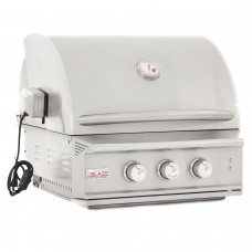 Blaze 2 Burner Professional Built-In Propane Gas Grill
